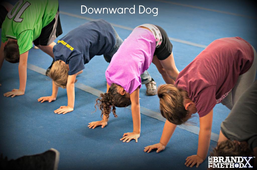 DownwardDog
